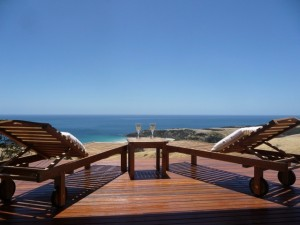 Snellings decking view